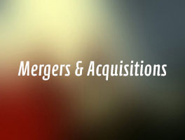 Technology Assessment, Mergers & Acquisitions